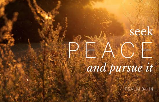 Seek-Peace